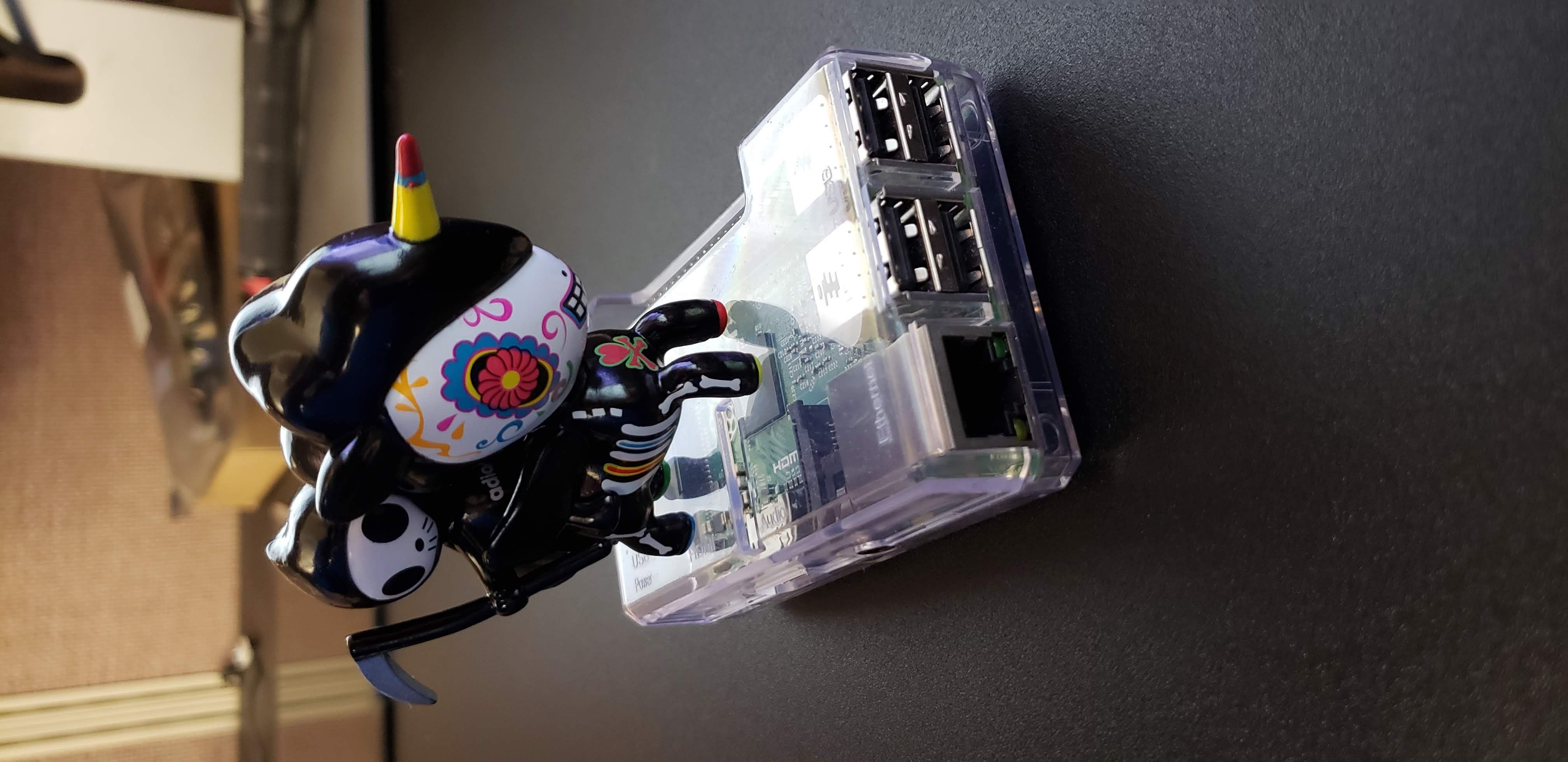 The one Raspberry Pi Project every House Needs!